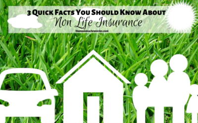 3 Fast Facts About Non-Life Insurance