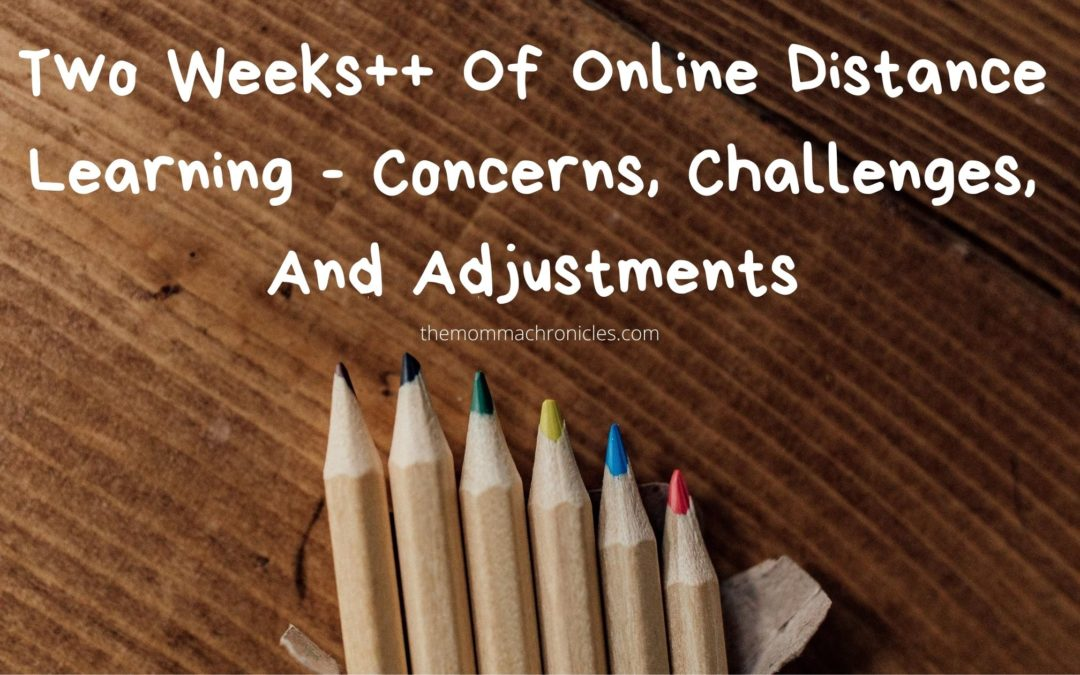 Online Distance Learning, So Far, So Good?